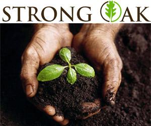 strong-oak