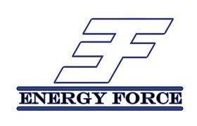 2e1ax_default_entry_energy-force